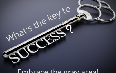 The Key to Success … Embrace the Gray Area!