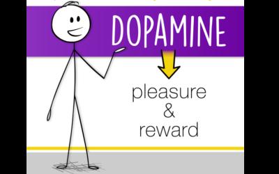 Neurotransmitter Series Part 1: Dopamine