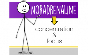 Noradrenaline
